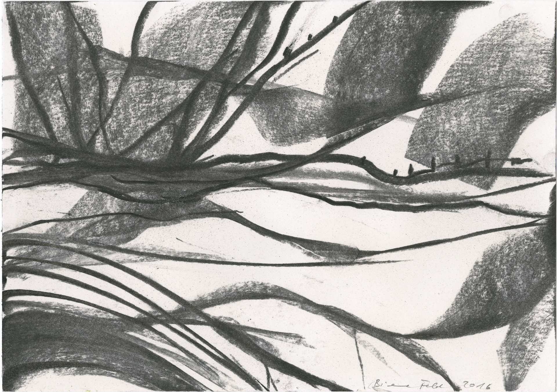 BieneFeld – untitled, 2016,charcoal on paper, 21 x 30 cm
