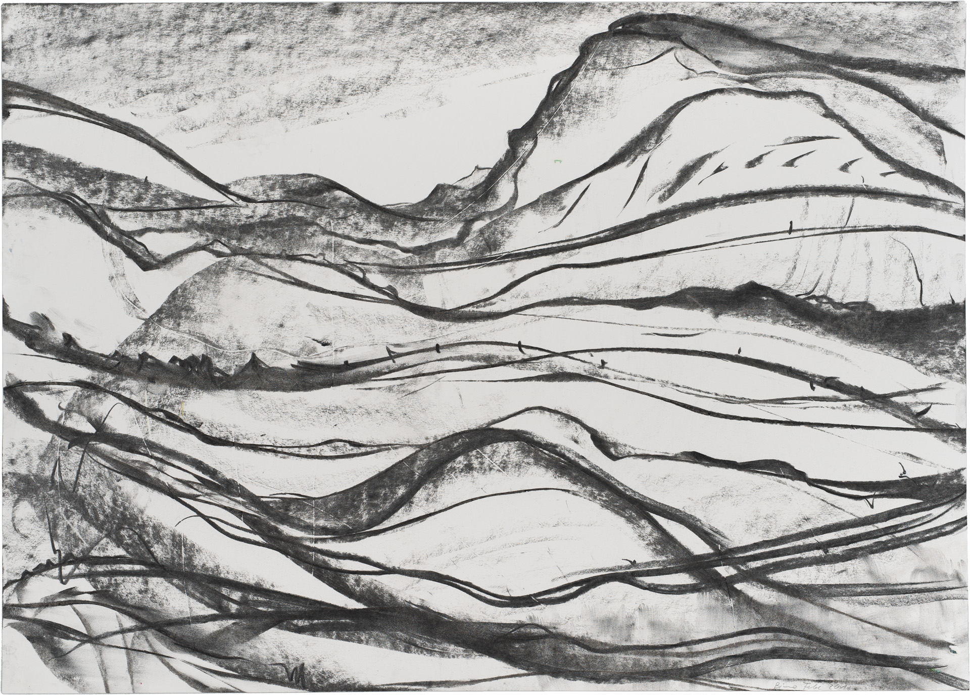 BieneFeld – untitled, 2016,charcoal on paper, 50 x 70 cm